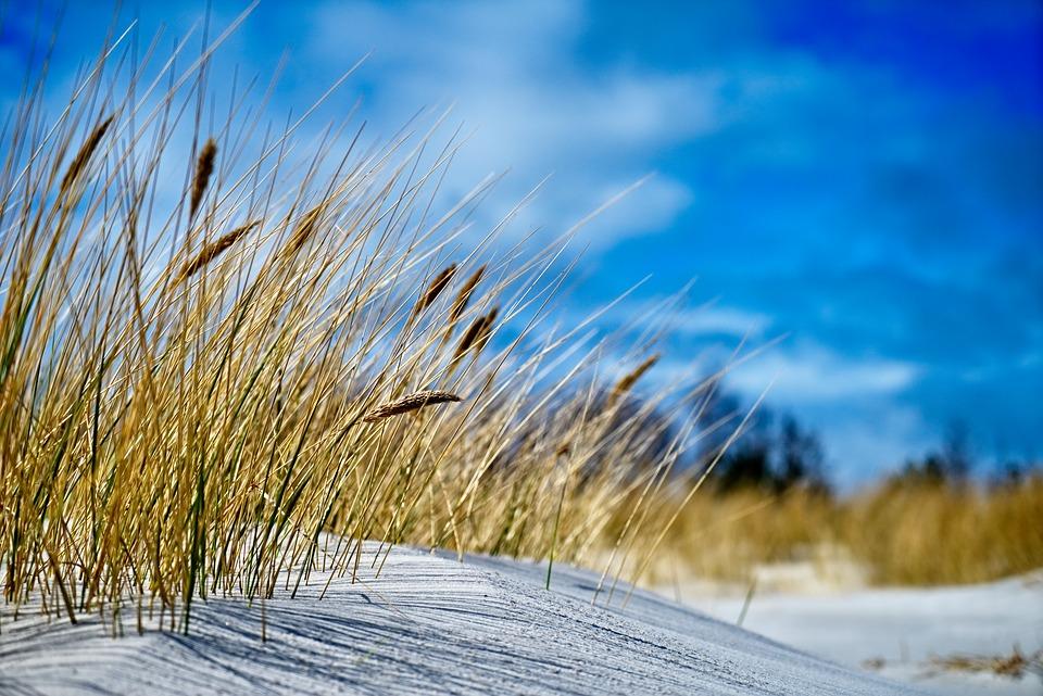 Siv i sand